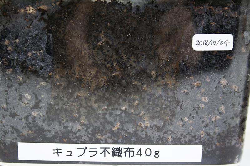 f:id:asakuraya:20190123101523j:plain