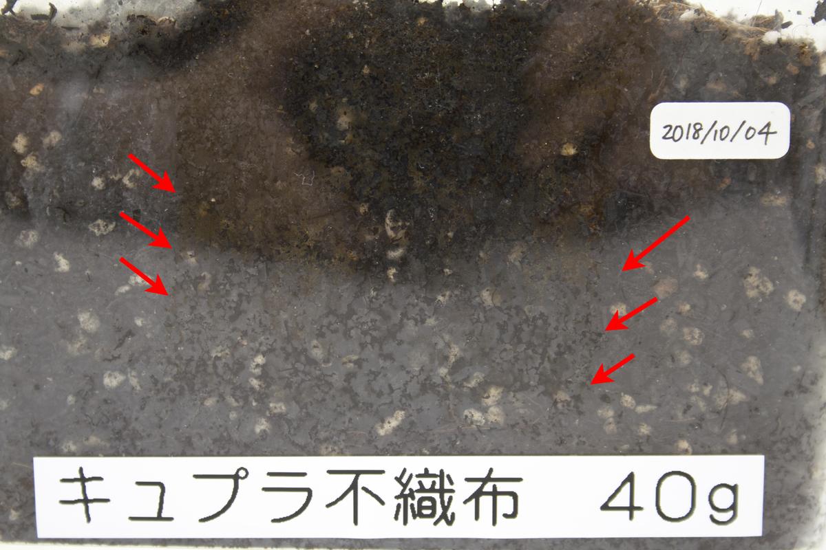 f:id:asakuraya:20190711133711j:plain