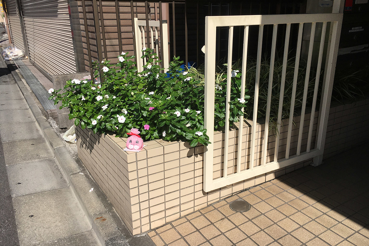 f:id:asakuraya:20191029084735j:plain