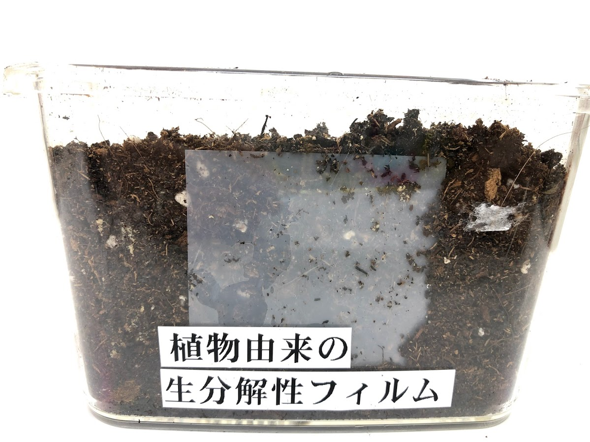 f:id:asakuraya:20210531115115j:plain