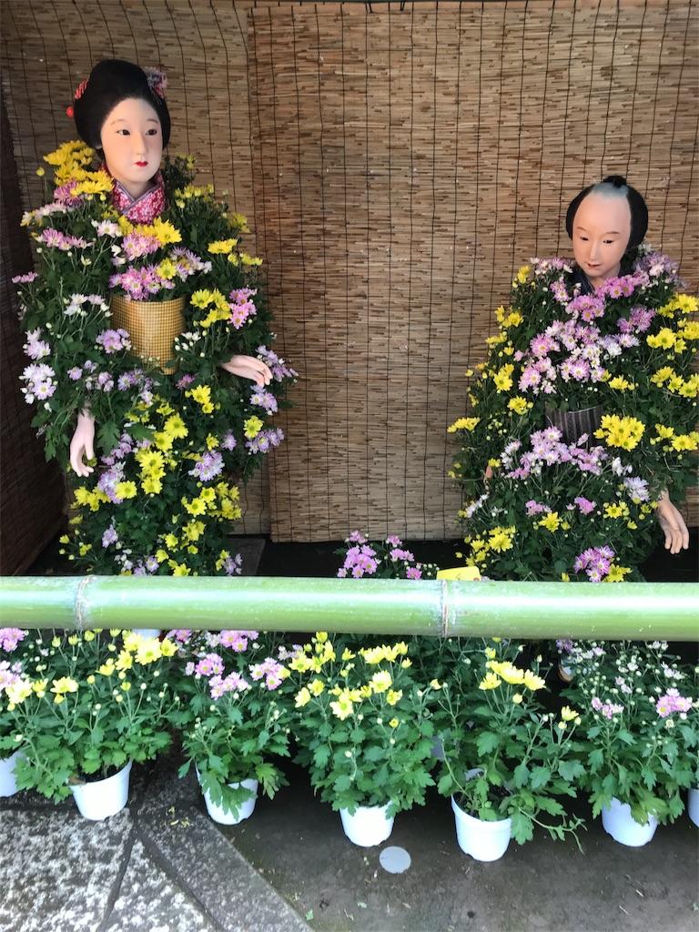 f:id:asakusa5809:20171007210201j:image