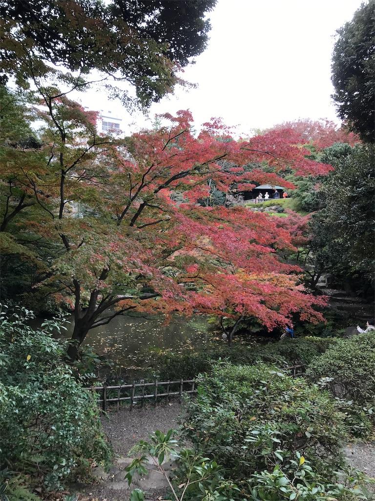 f:id:asakusa5809:20171119164917j:image
