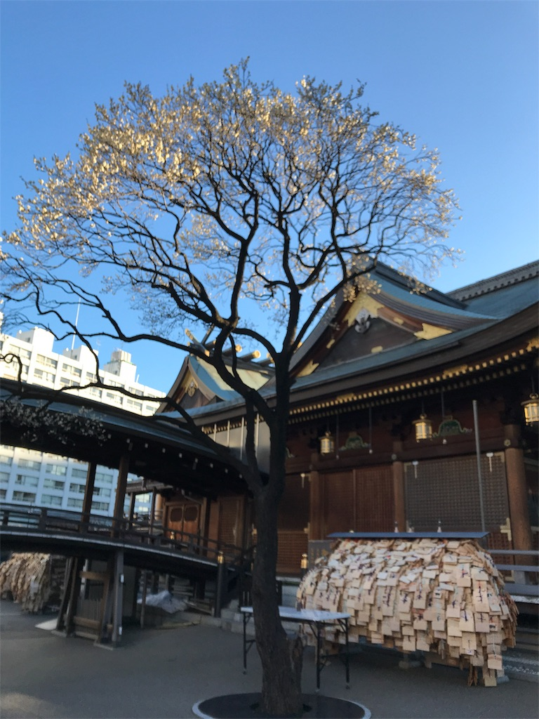 f:id:asakusa5809:20180207080704j:image
