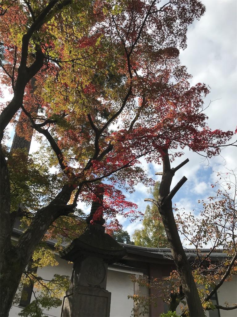 f:id:asakusa5809:20181111153407j:image