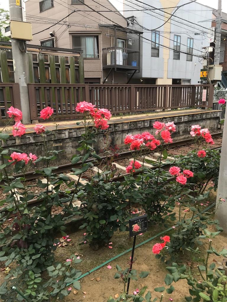 f:id:asakusa5809:20200530182237j:image