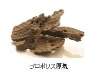 f:id:asakusasupple:20190330224150j:plain