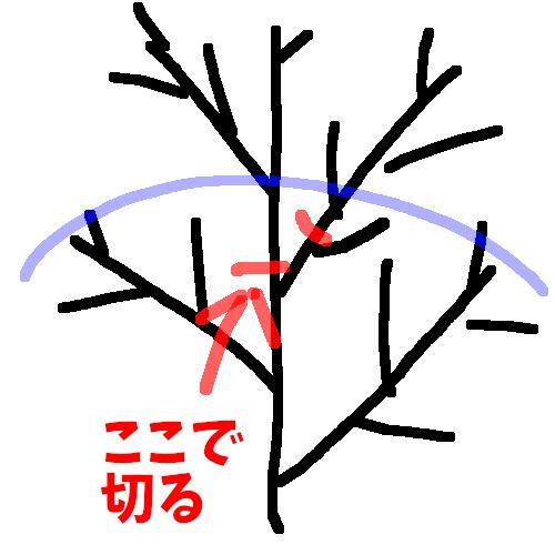 f:id:asameshiya:20190620145734p:plain