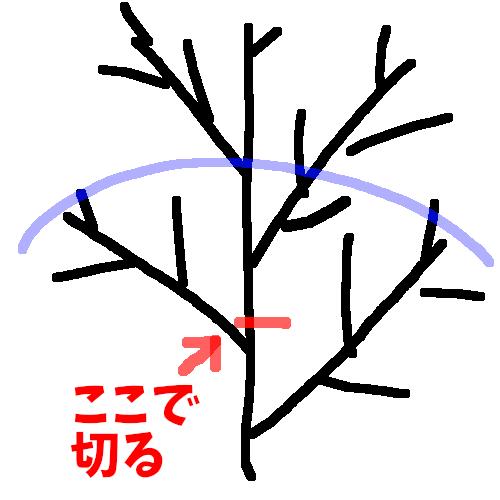 f:id:asameshiya:20190620145737p:plain