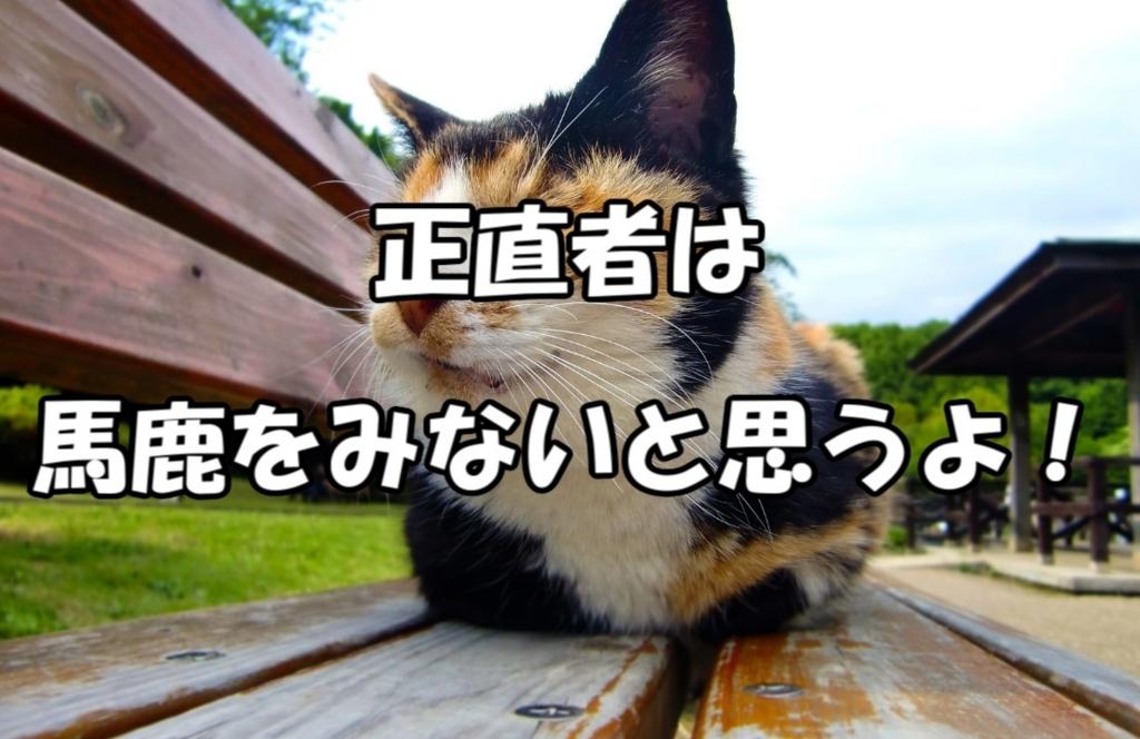 f:id:asamushi:20180725183108j:plain