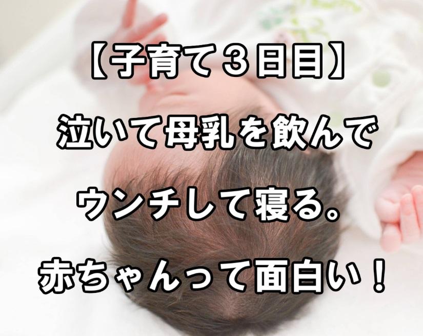 f:id:asamushi:20180924125316j:plain