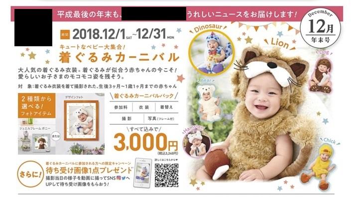 f:id:asamushi:20181210101059j:plain