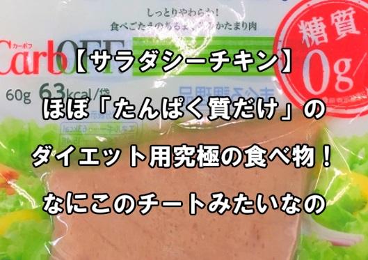 f:id:asamushi:20181215105018j:plain