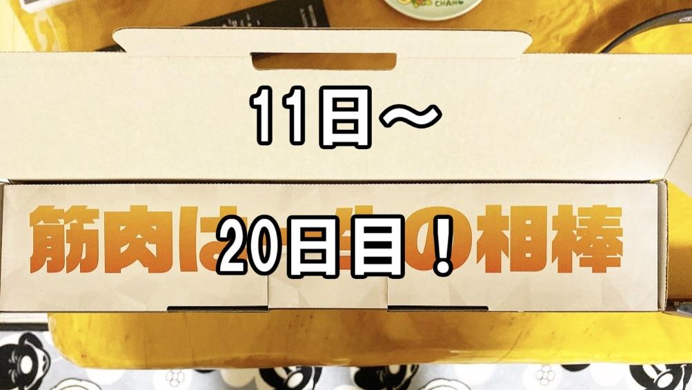 f:id:asamushi:20191220214343j:plain