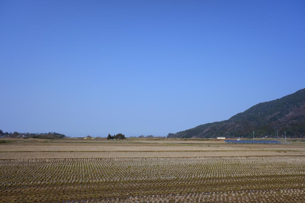 f:id:asanokawa:20190305134355j:plain