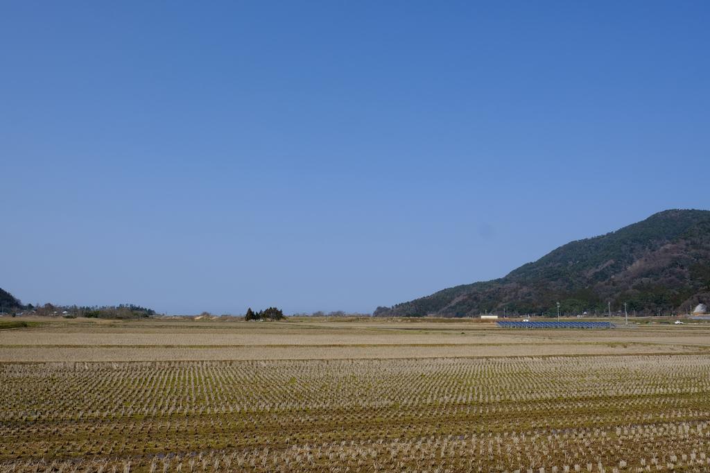 f:id:asanokawa:20190305134623j:plain