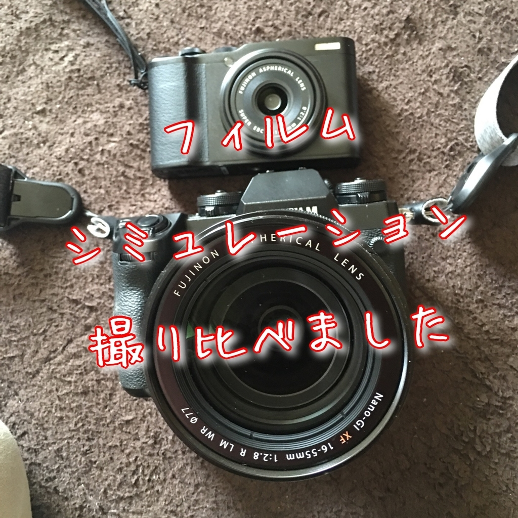 f:id:asanokawa:20190305143338j:plain