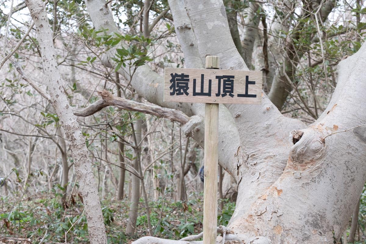 f:id:asanokawa:20190326190210j:plain