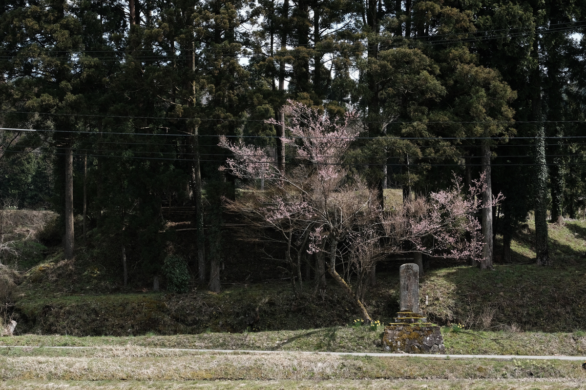 f:id:asanokawa:20190411152653j:plain
