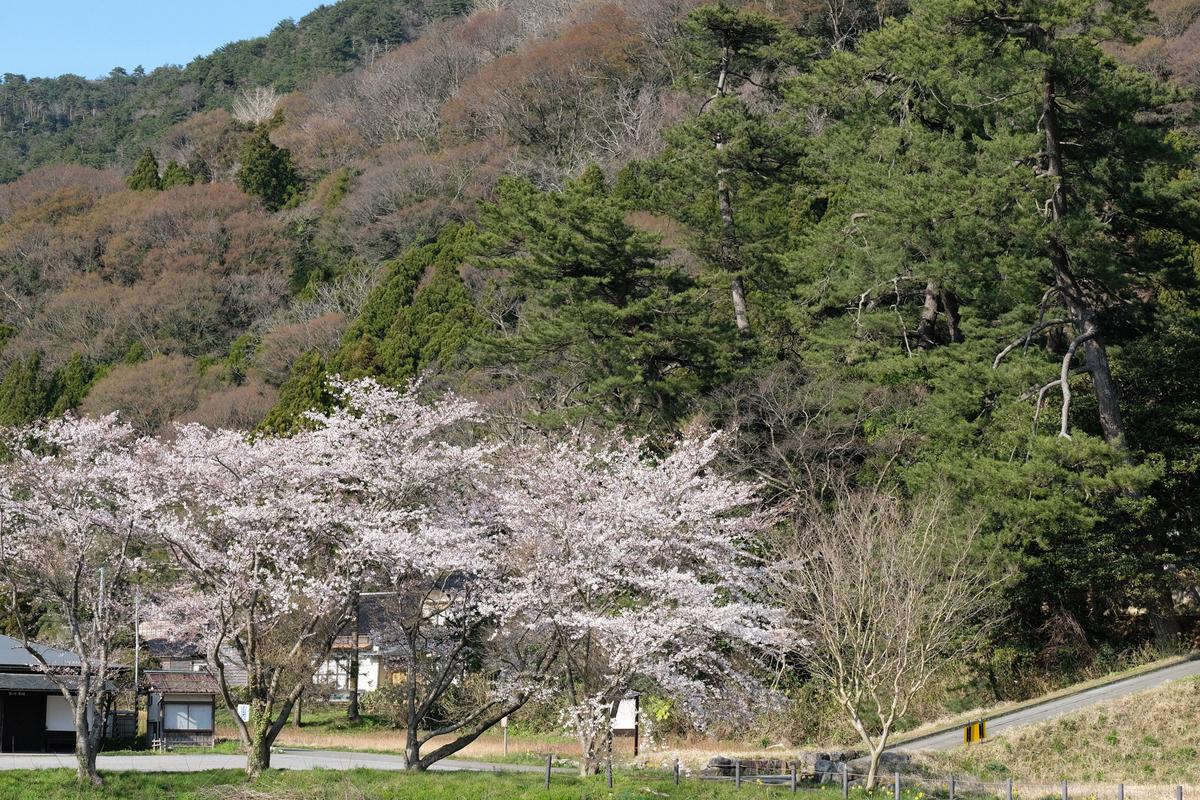 f:id:asanokawa:20190412200837j:plain