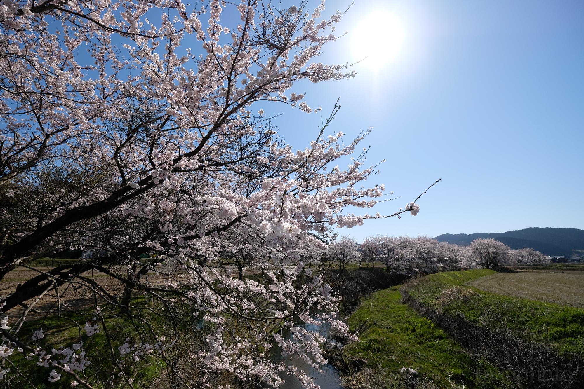 f:id:asanokawa:20190416160118j:plain