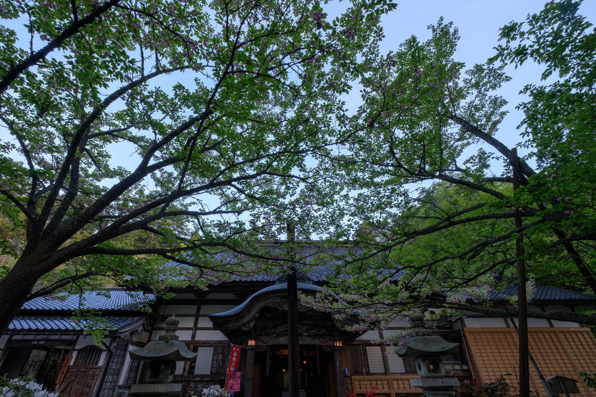 f:id:asanokawa:20190506141042j:plain