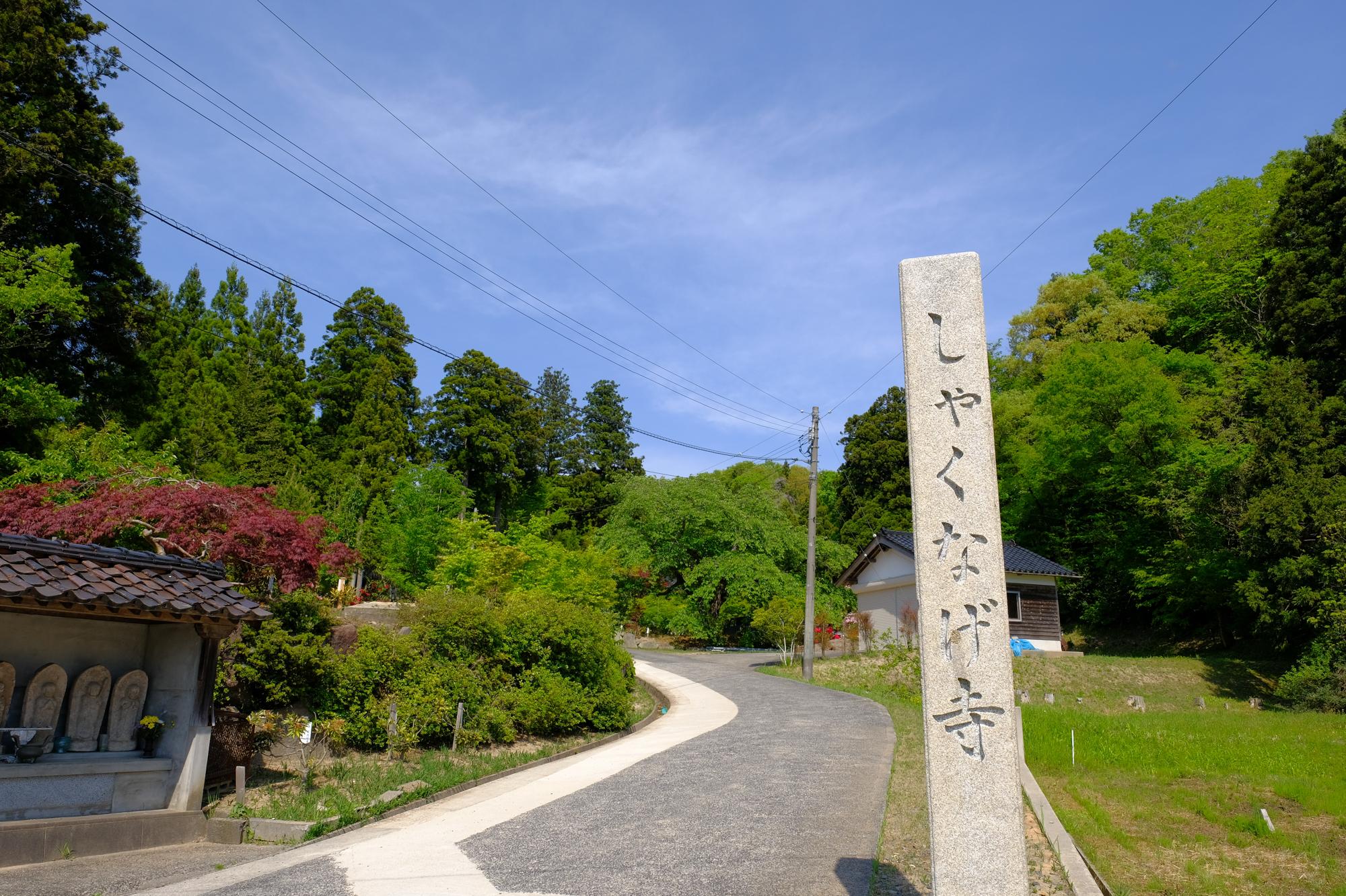 f:id:asanokawa:20190513200752j:plain