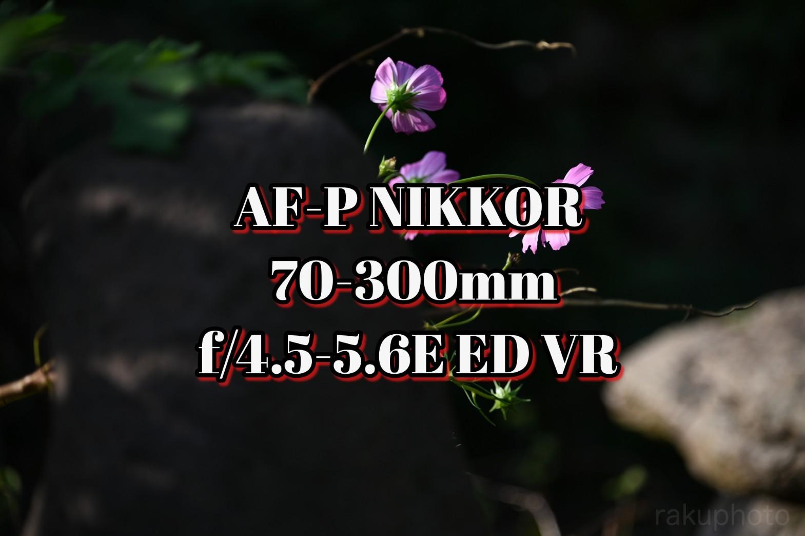 f:id:asanokawa:20191031161430j:plain