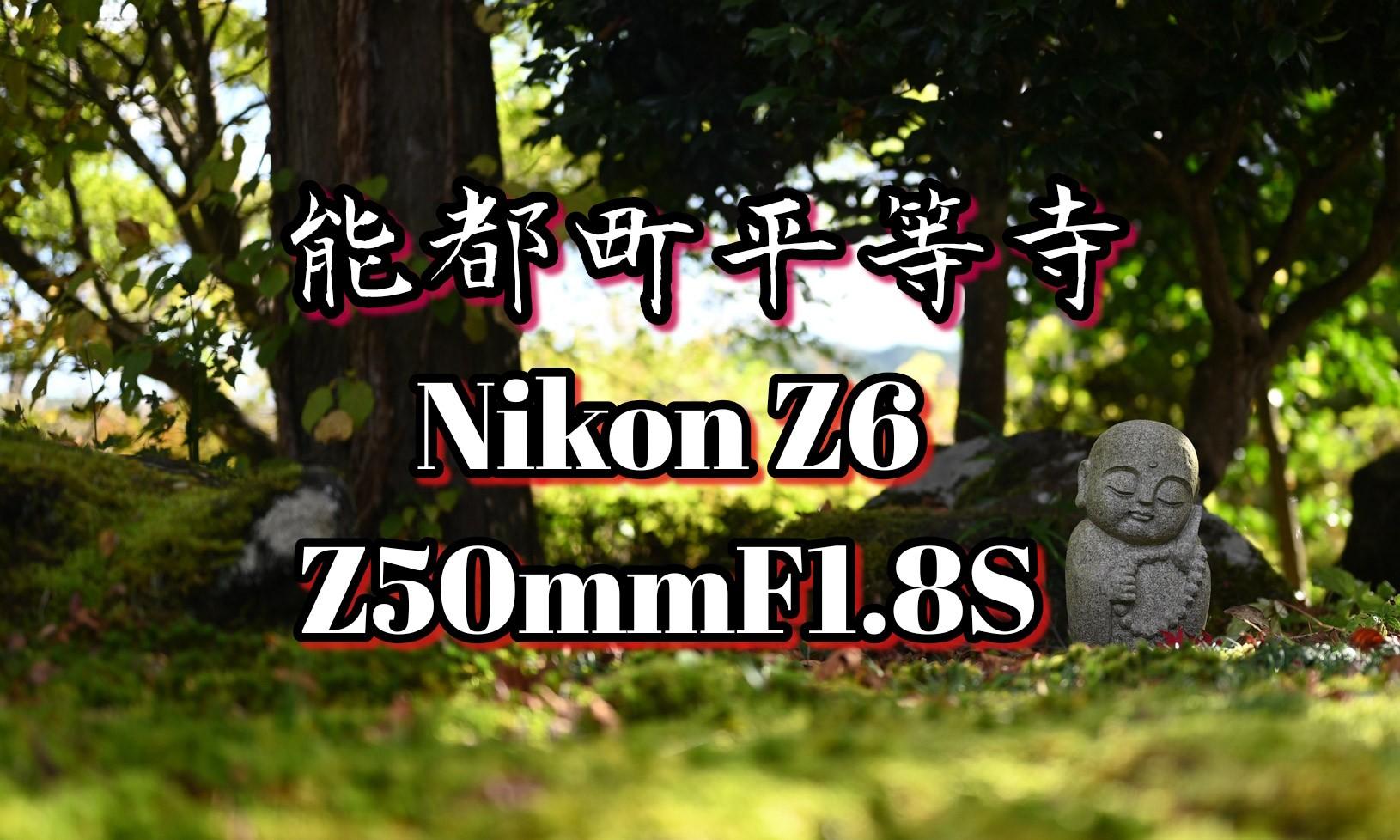 f:id:asanokawa:20191107164231j:plain