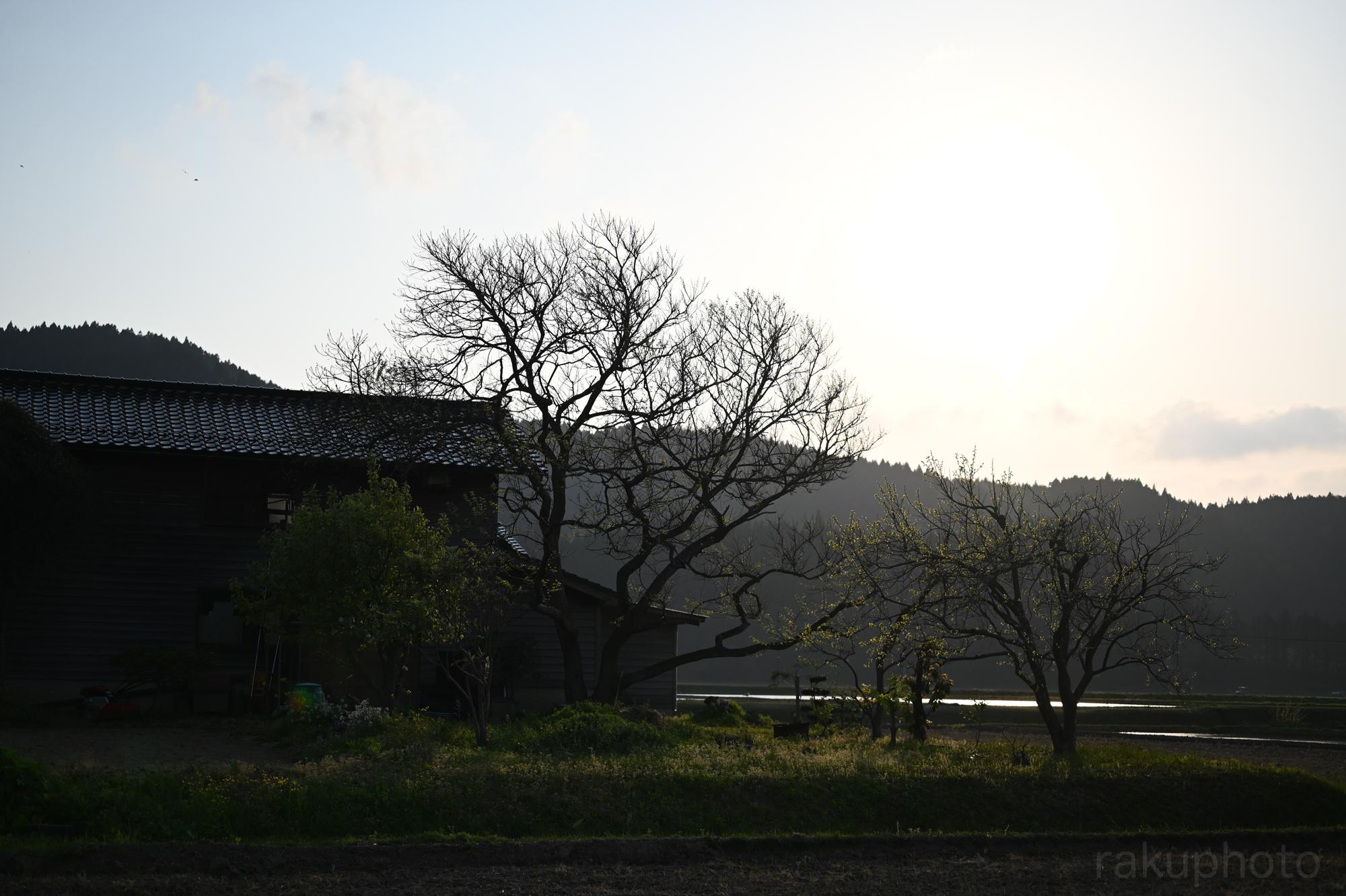 f:id:asanokawa:20200501185742j:plain