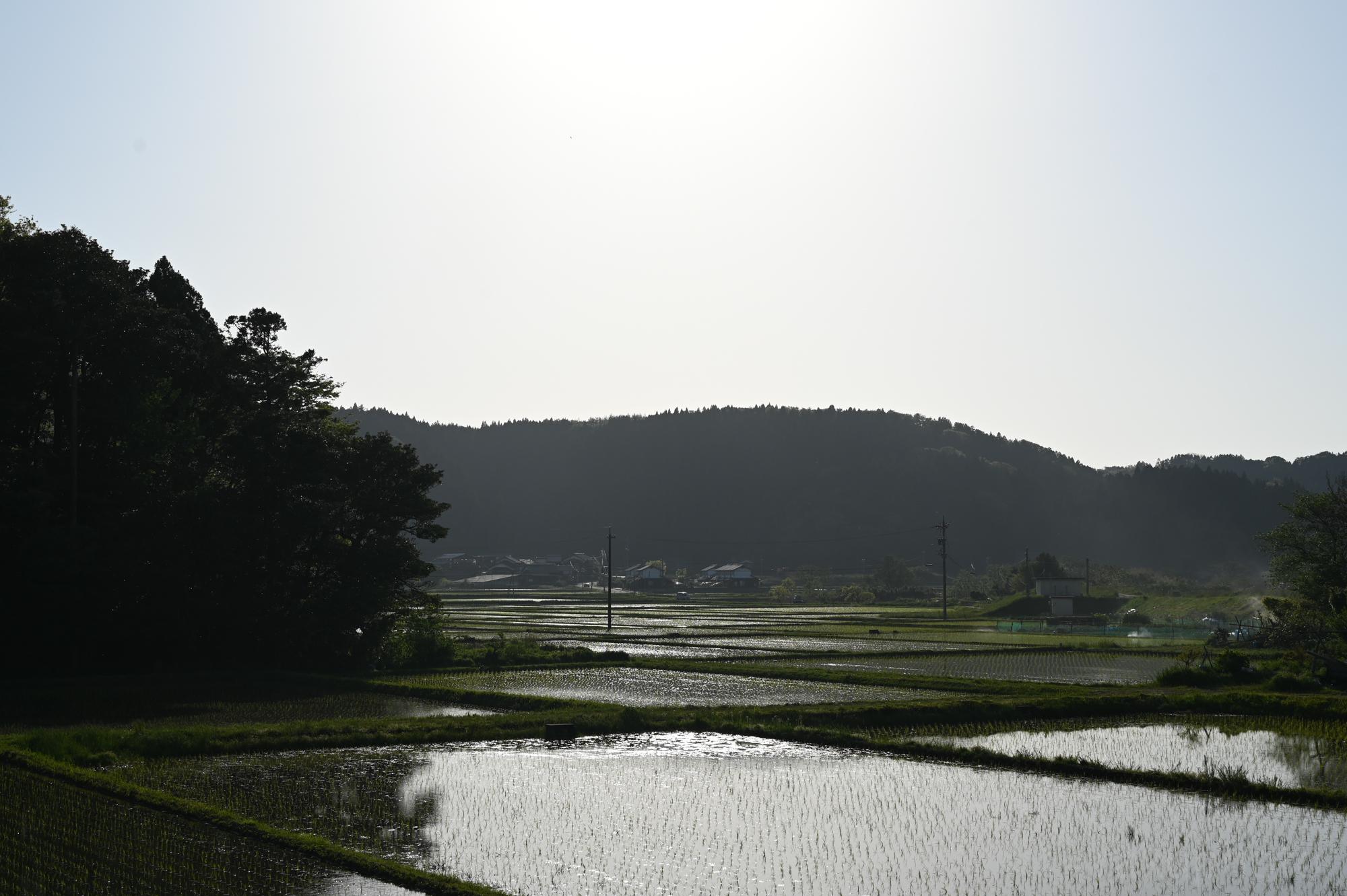 f:id:asanokawa:20200511191125j:plain