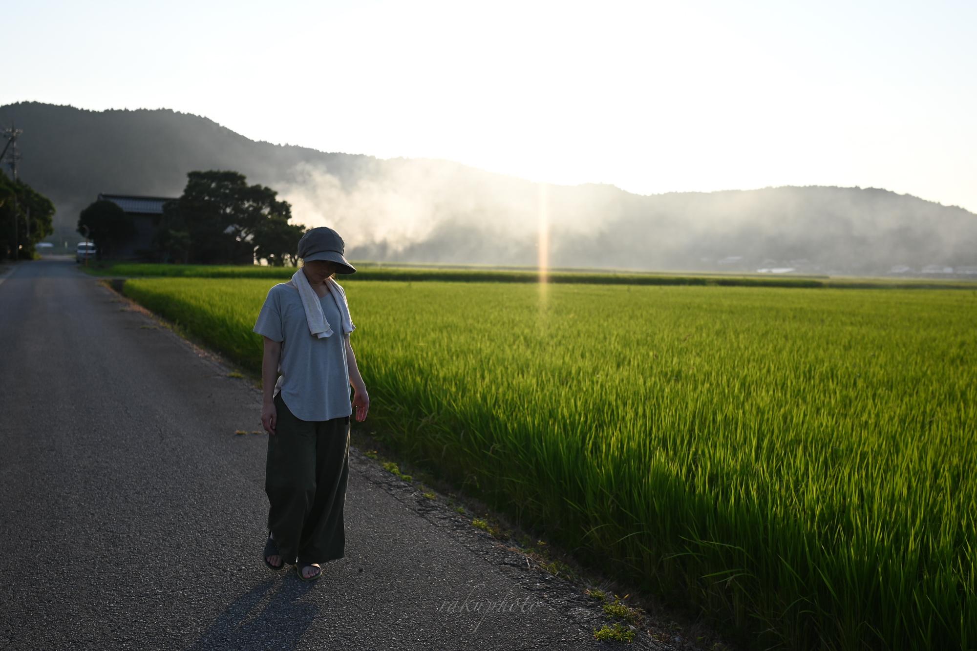 f:id:asanokawa:20200825182446j:plain