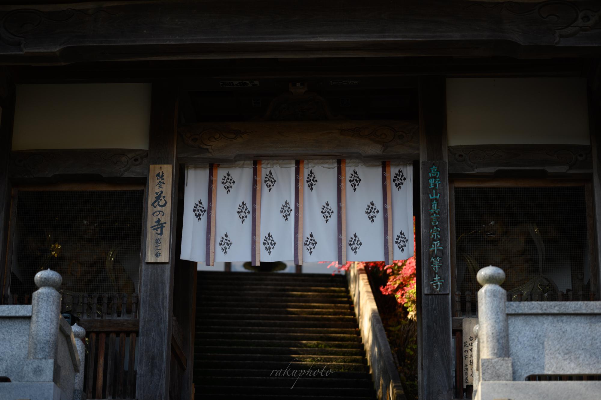f:id:asanokawa:20201112174847j:plain