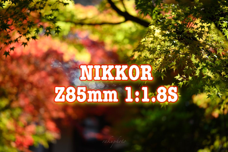 f:id:asanokawa:20201112180459j:plain