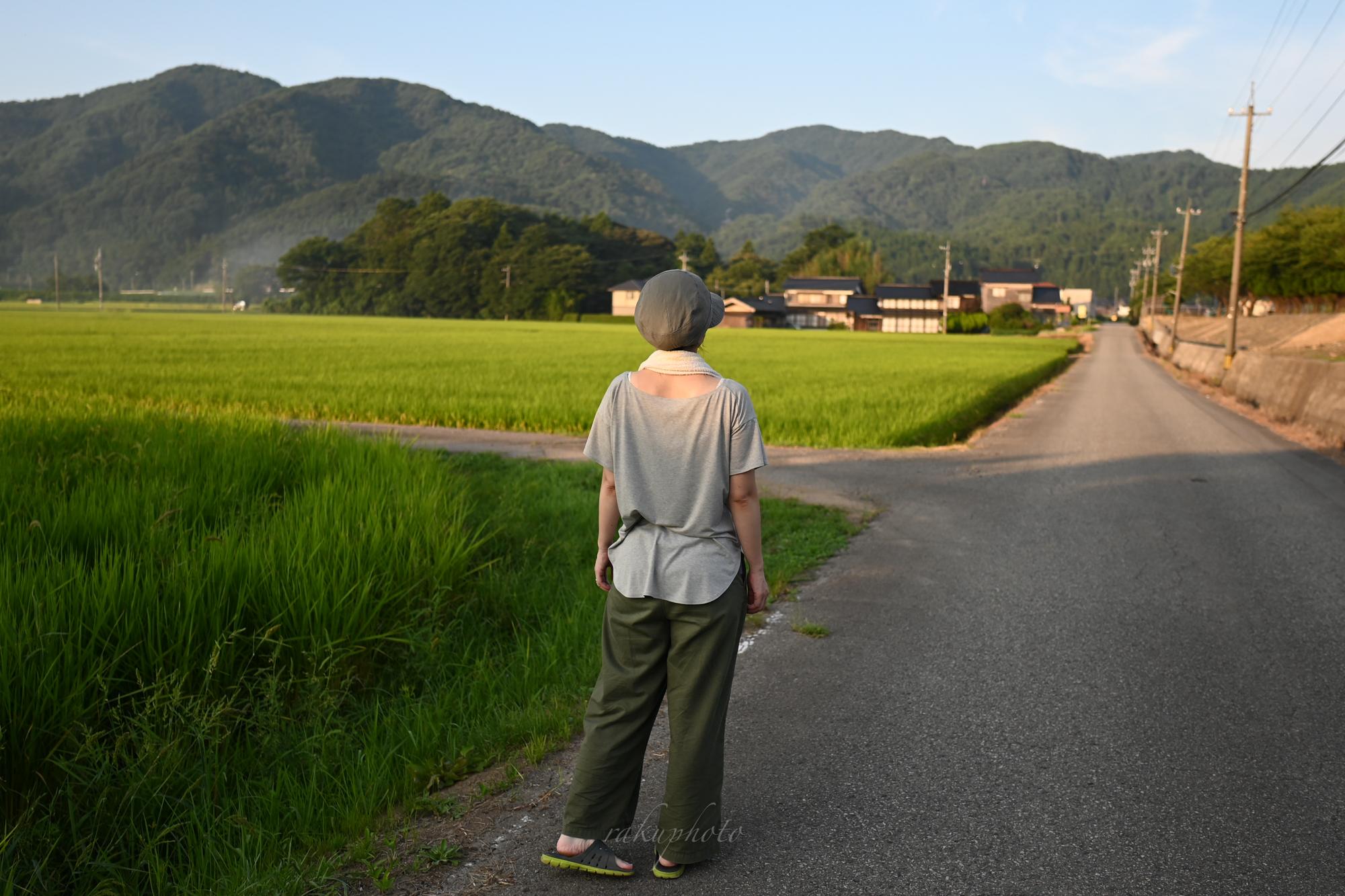 f:id:asanokawa:20201216172054j:plain