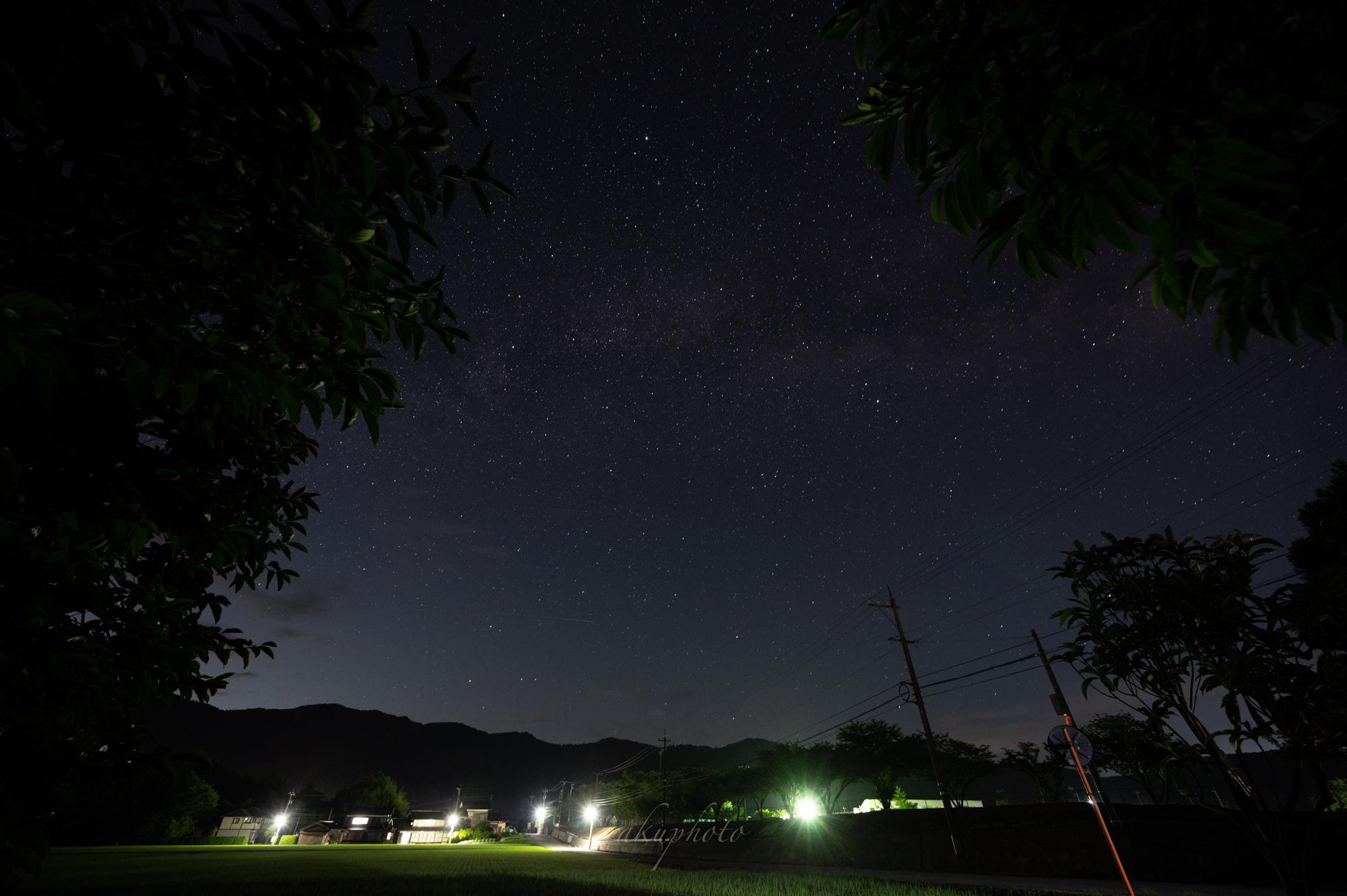 f:id:asanokawa:20210109133502j:plain