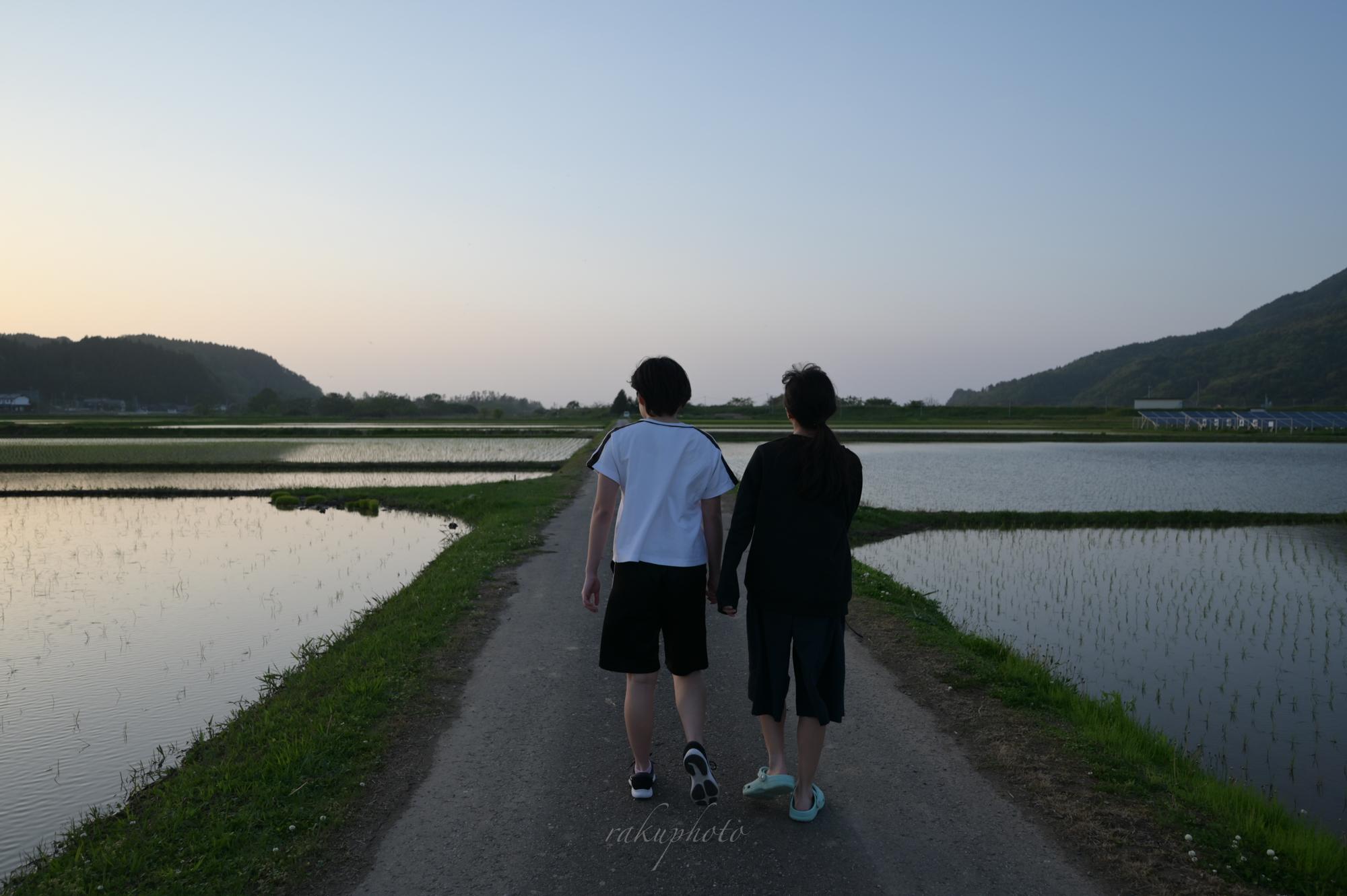 f:id:asanokawa:20210109133808j:plain
