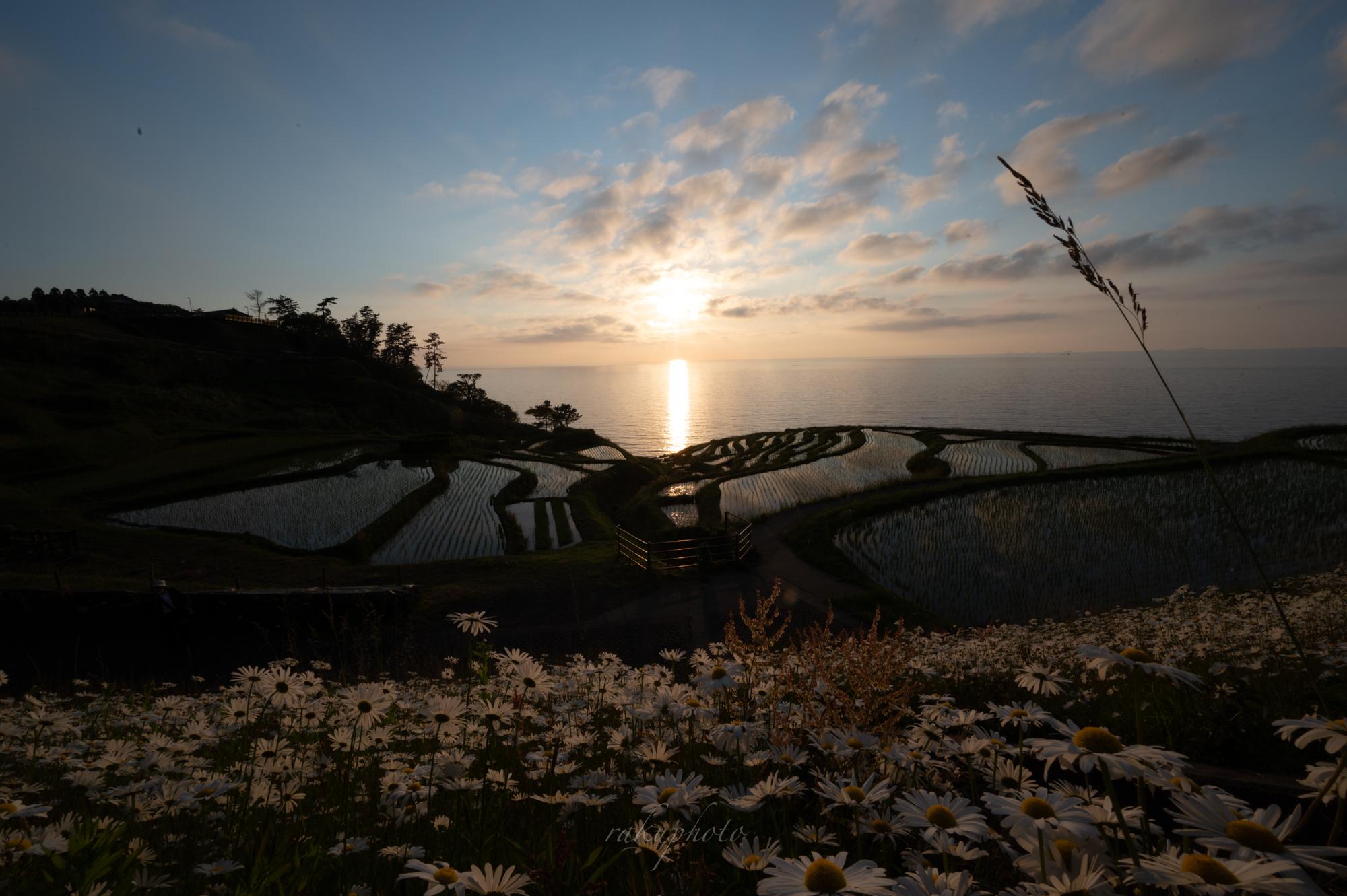 f:id:asanokawa:20210109133850j:plain