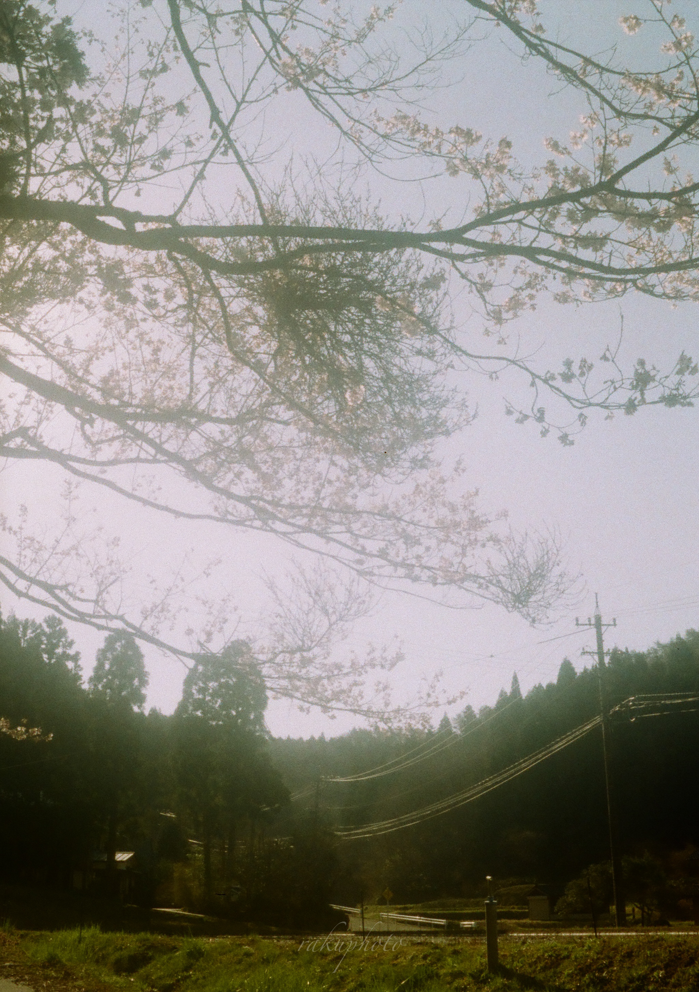 f:id:asanokawa:20210216182039j:plain
