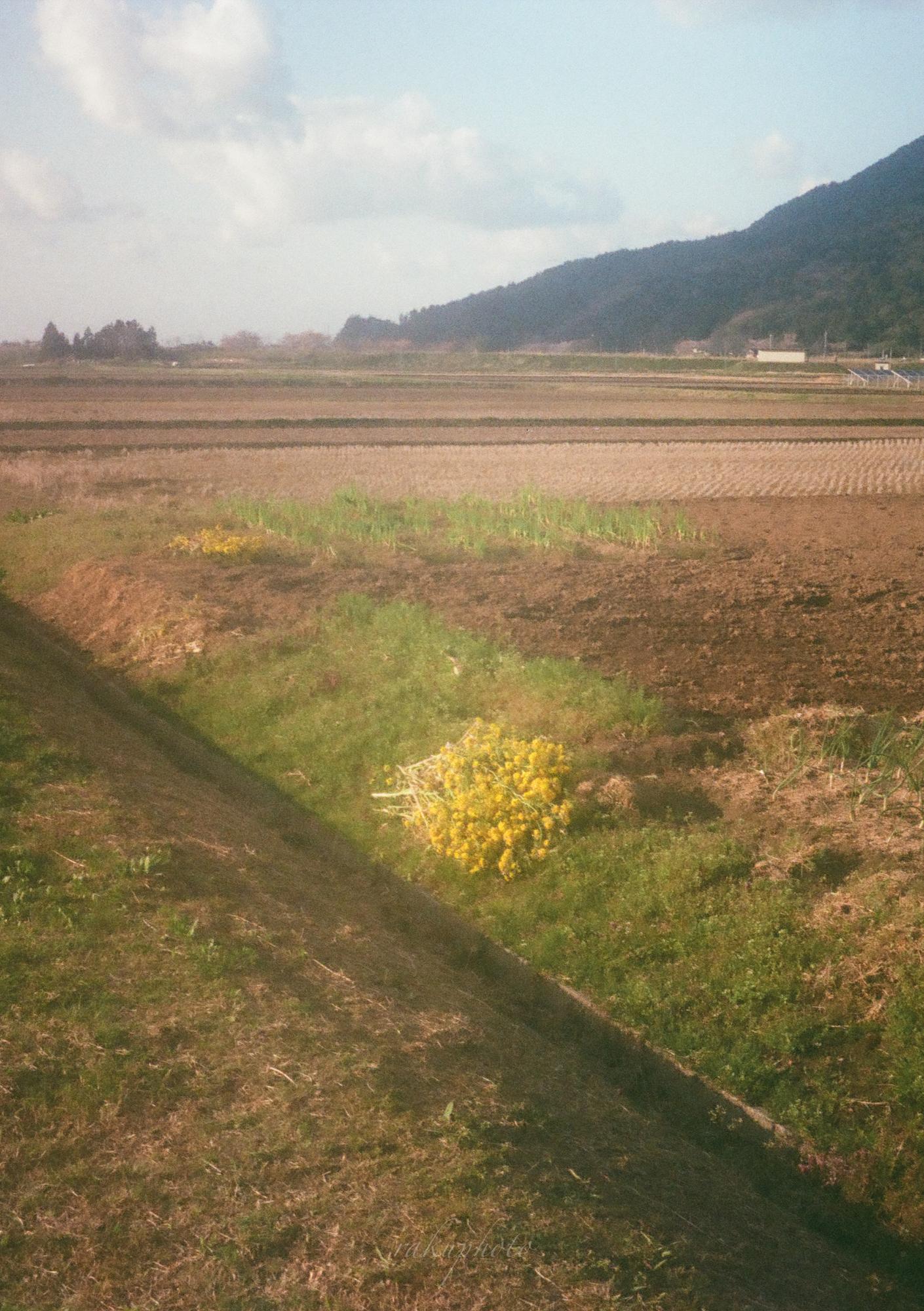 f:id:asanokawa:20210216182103j:plain