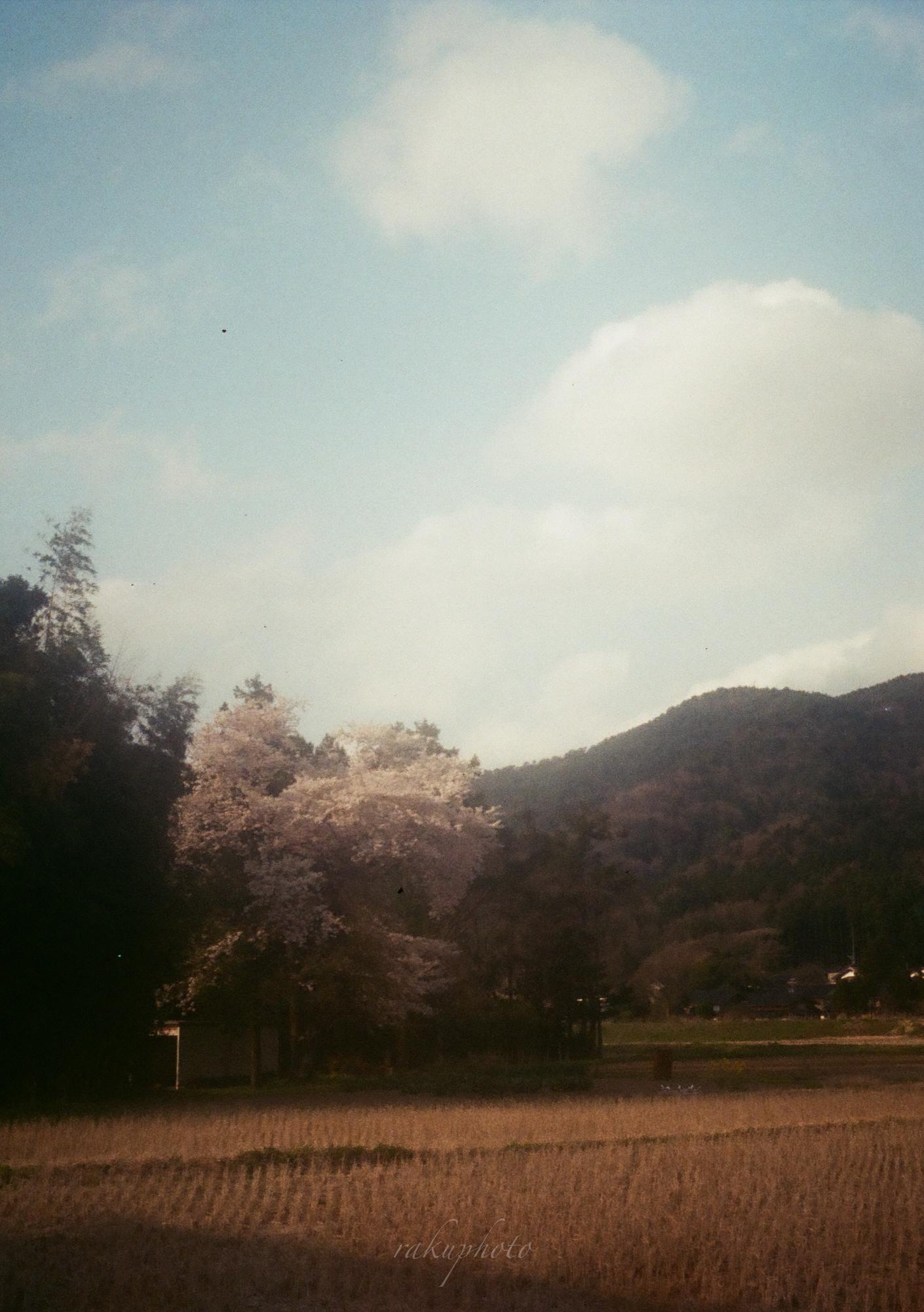 f:id:asanokawa:20210216182131j:plain