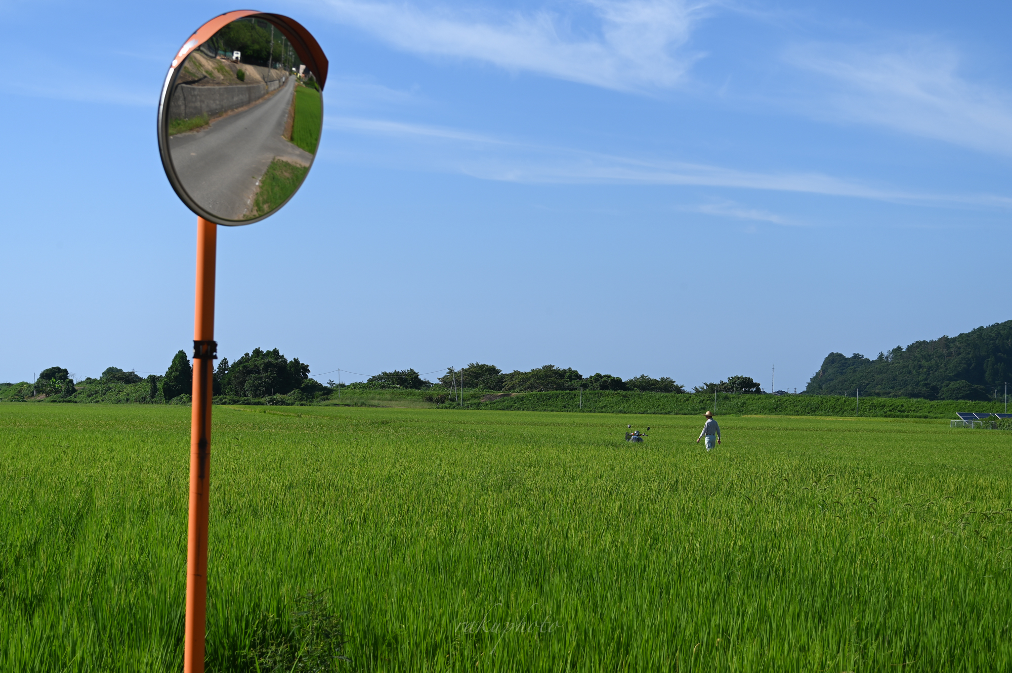 f:id:asanokawa:20210218180944j:plain