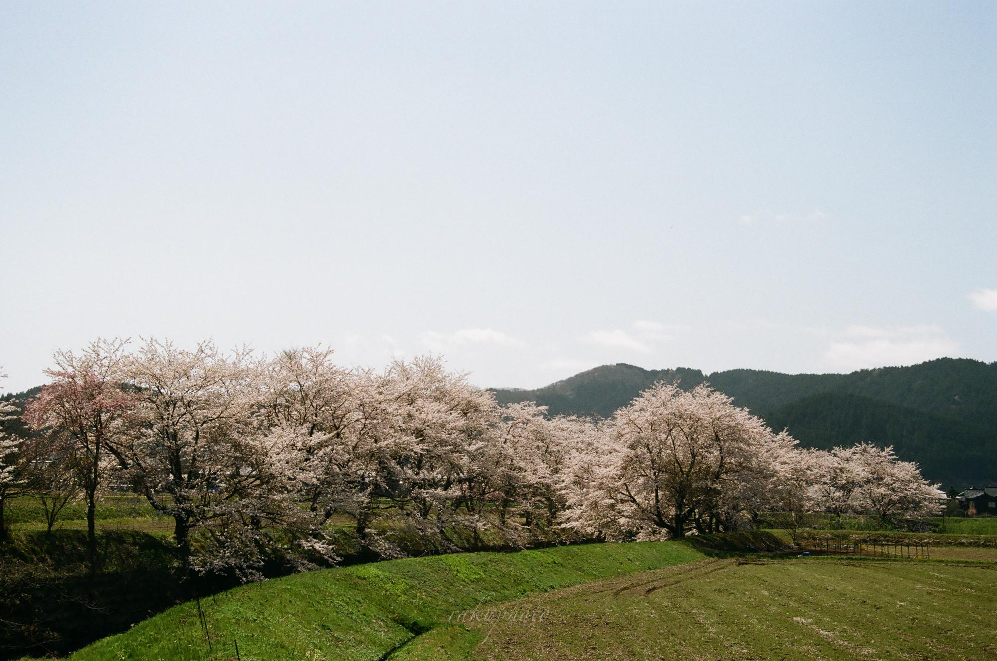 f:id:asanokawa:20210419141318j:plain