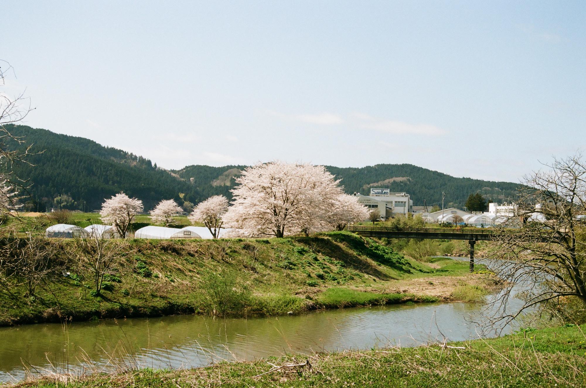 f:id:asanokawa:20210419141408j:plain