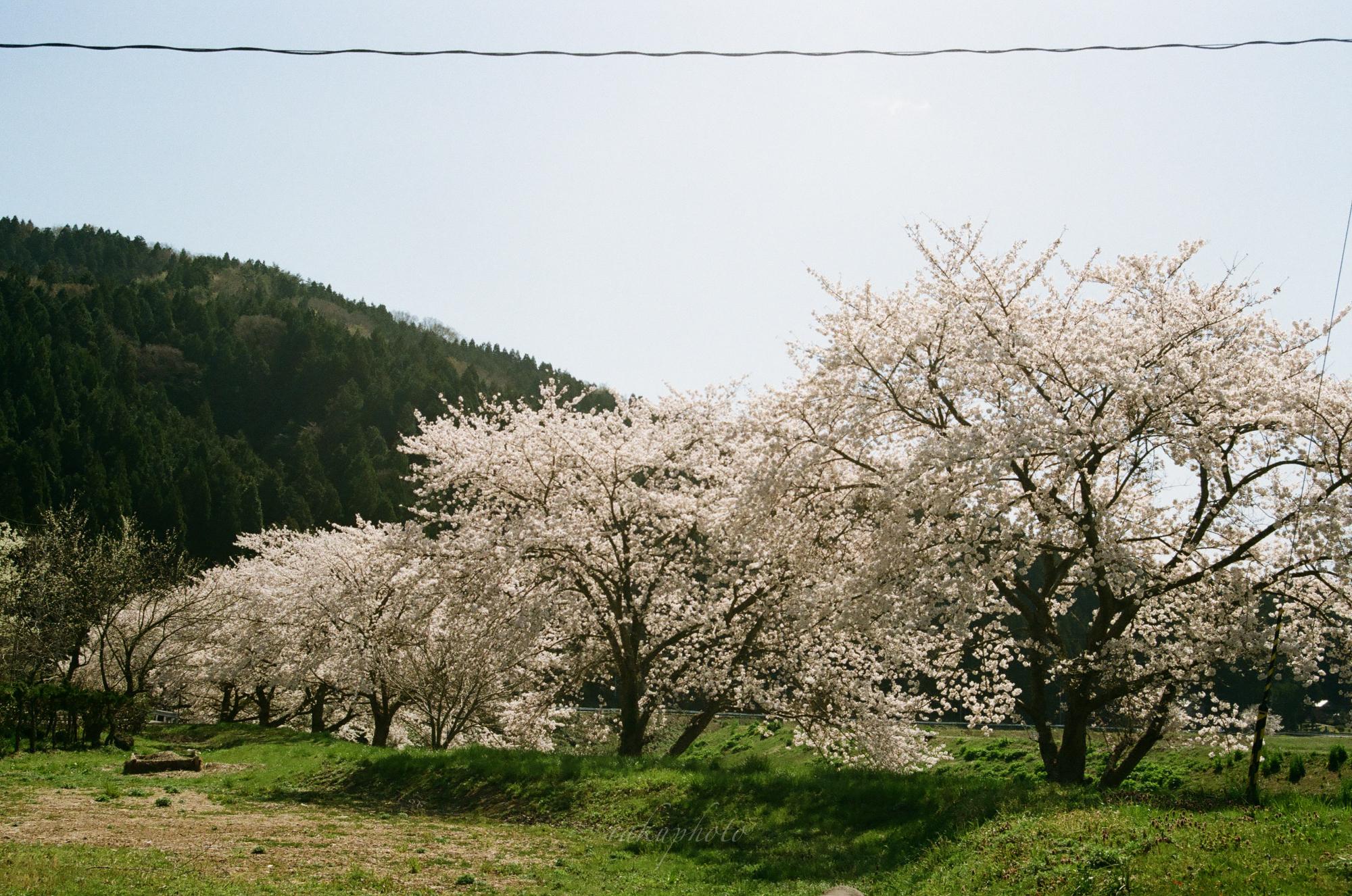f:id:asanokawa:20210419141428j:plain