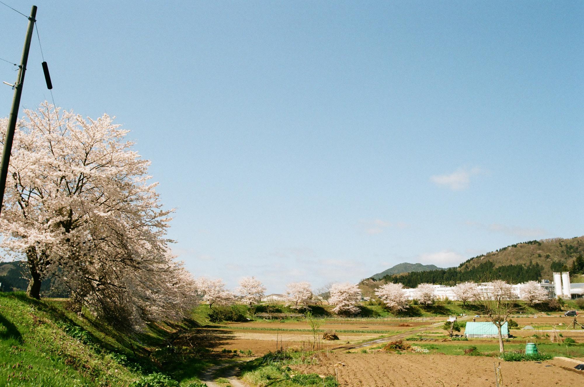 f:id:asanokawa:20210419141452j:plain