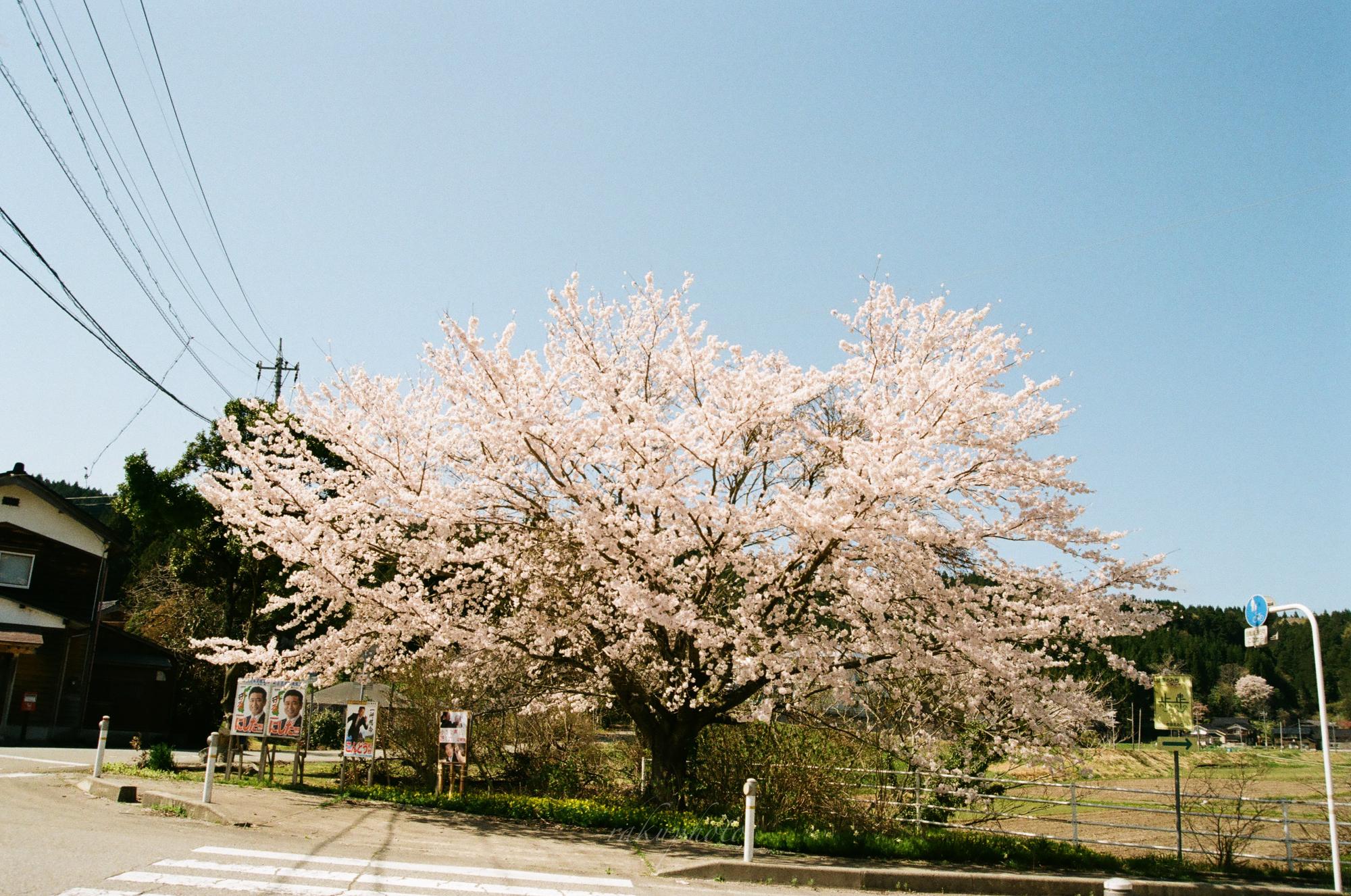 f:id:asanokawa:20210419141601j:plain