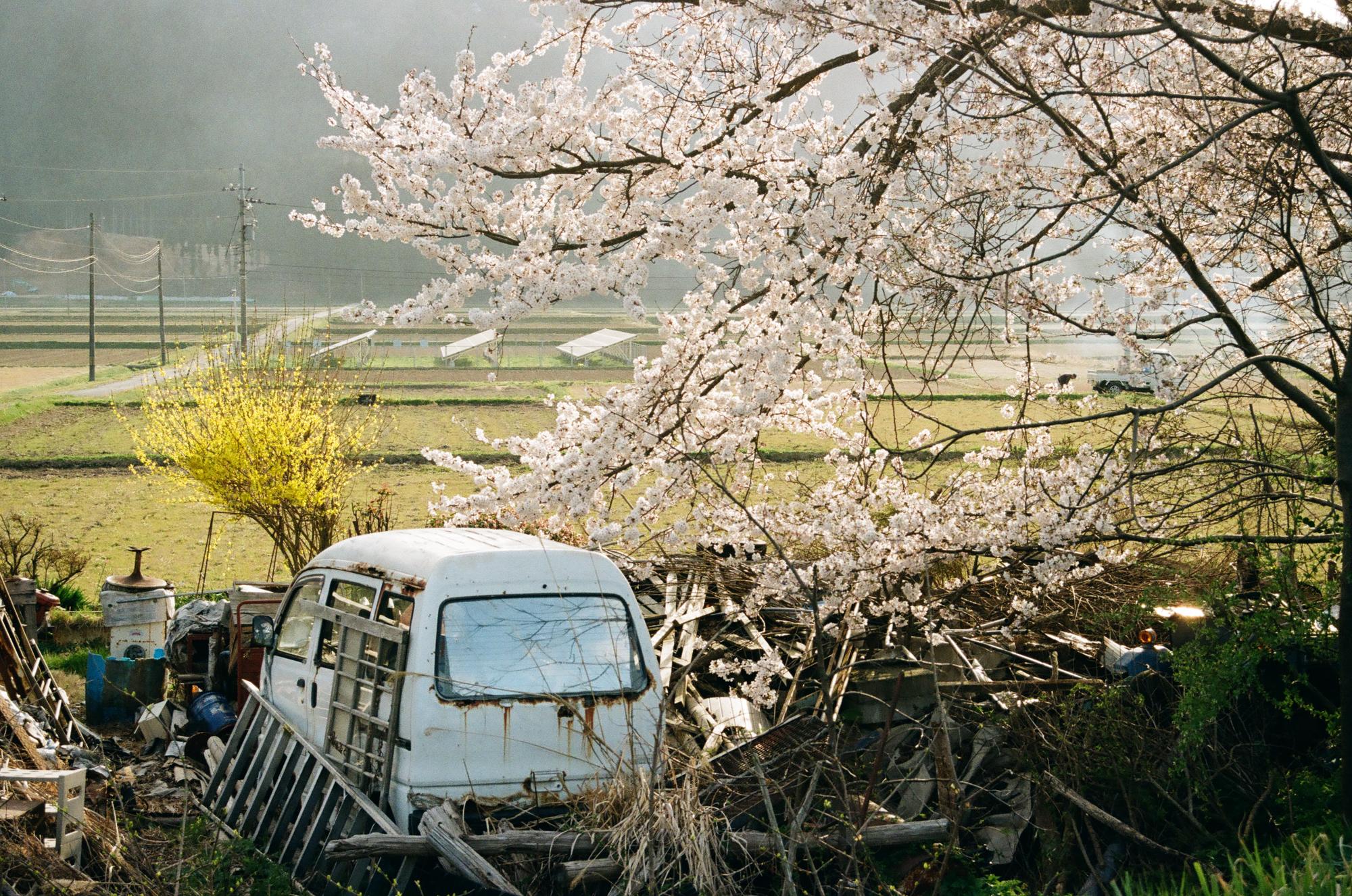 f:id:asanokawa:20210419141849j:plain