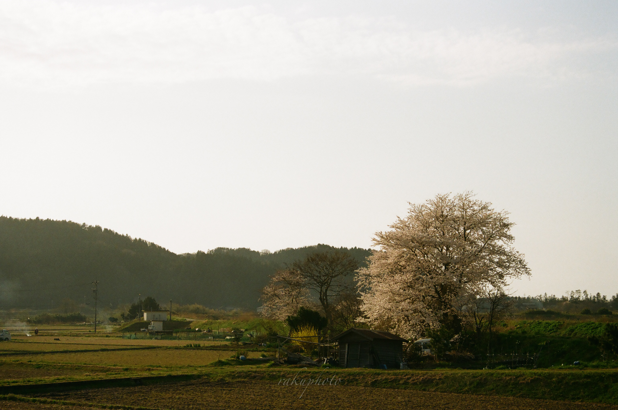 f:id:asanokawa:20210419141921j:plain