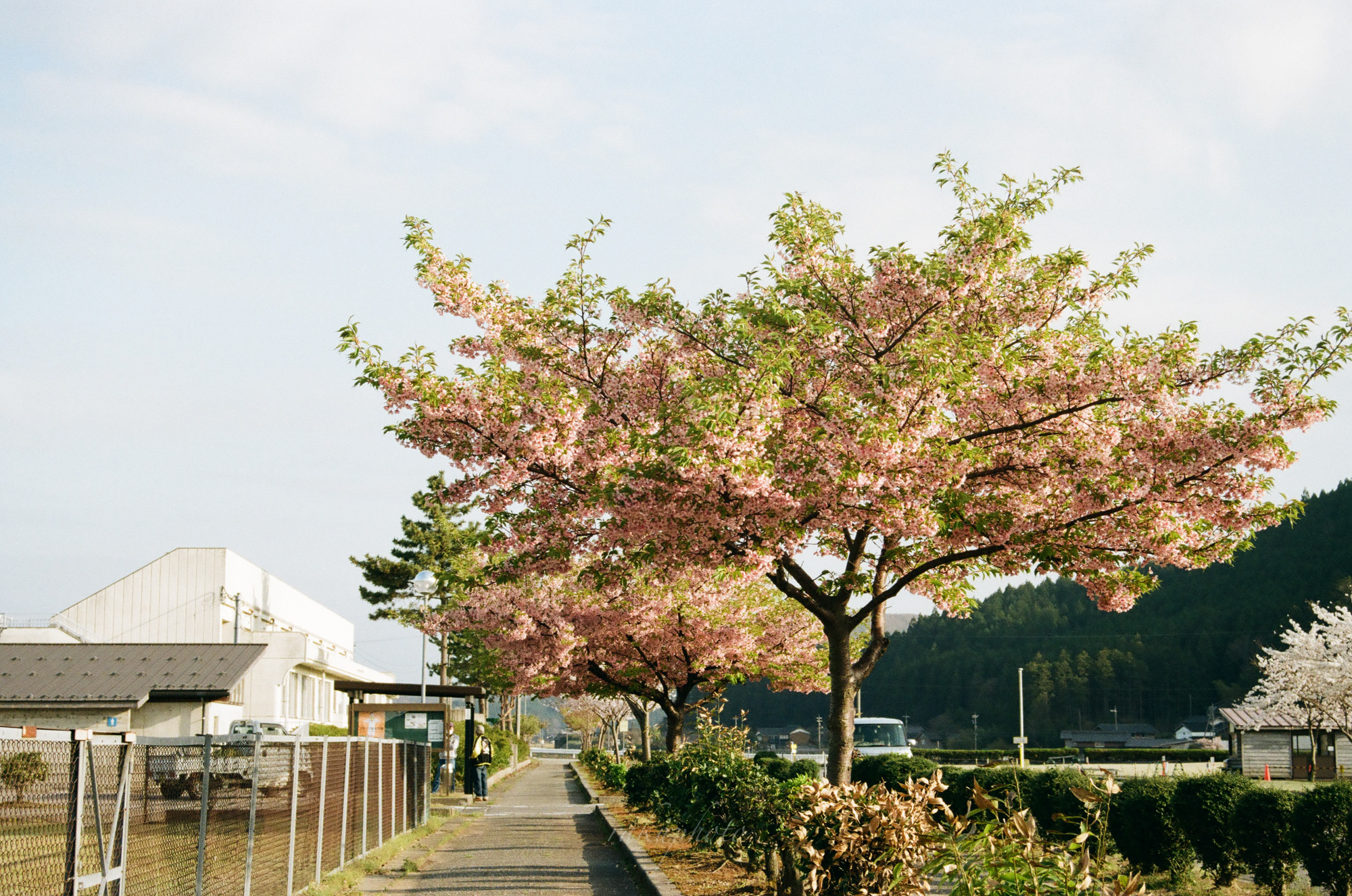 f:id:asanokawa:20210419142047j:plain