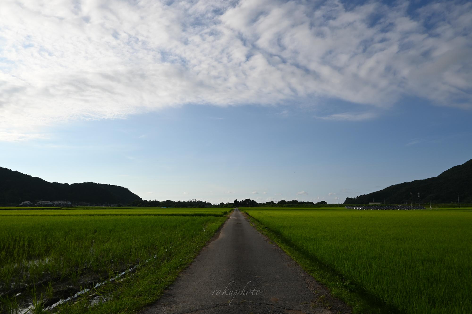 f:id:asanokawa:20210723194837j:plain